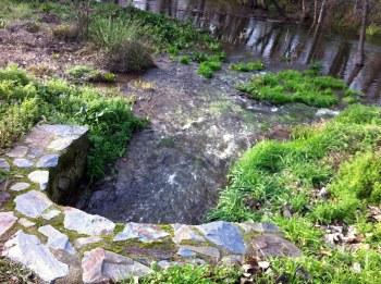 Fuga aguas fecales al rio Jerte1